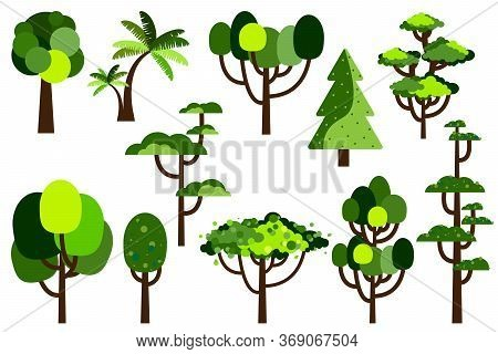 Cartoon Tree. Collection Of Trees. Simple Flat Forest Flora, Coniferous And Deciduous Trees, Oak, Pi