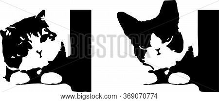 Cat Vector Isolated On Background , Silhouette, Simple