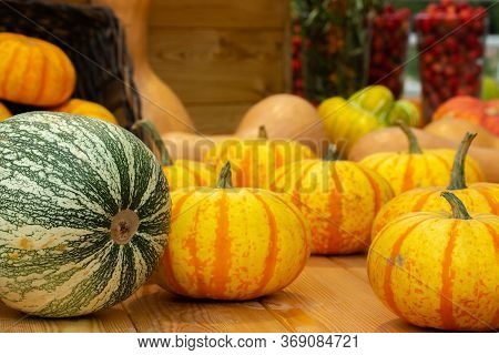 Small Striped Orange Pumpkins Harvesting A Farm. Fresh Vegetable On A Wooden Table, Set Of Different