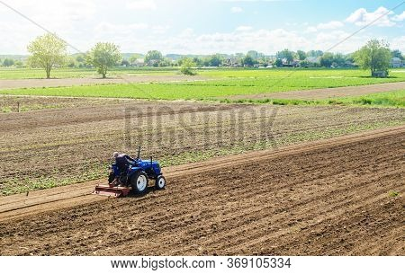 A Farmer On A Tractor Cultivates A Farm Field. Field Preparation For New Crop Planting. Cultivation