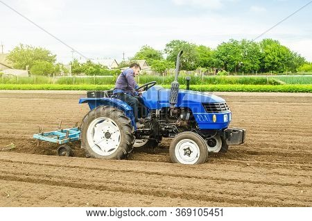 A White Caucasian Farmer On A Tractor Making Rows On A Farm Field. Preparing The Land For Planting F
