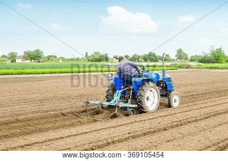 Farmer On A Tractor With A Cultivator Processes A Farm Field. Soil Preparation, Cutting Of Rows For