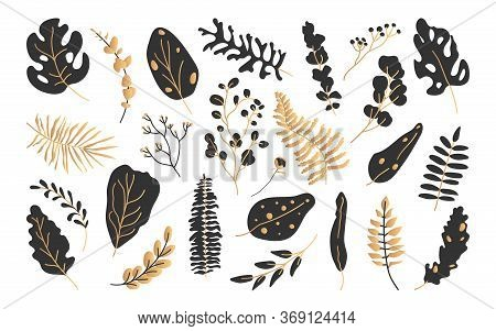 Set Of Exotic Black Gold Tropical Leaf. Hand Drawn Abstract Jungle Floral Botanic Element Leaves Pal