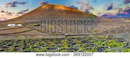 Scenic Landscape With Volcanic Vineyards. Lanzarote. Canary Islands.spain.la Geria Vineyard On Black