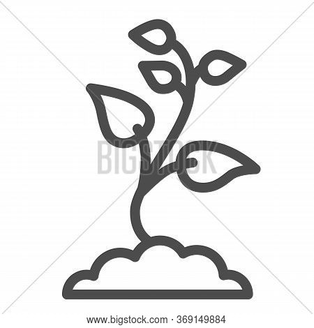 Seedling With Many Leaves Line Icon, Nature Concept, Seeds Sprout In Ground Sign On White Background