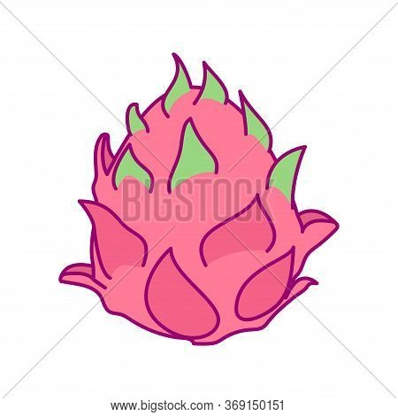 Vector Cute Drawn Fruit Clipart Pitaya Dragonfruit
