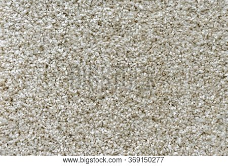 Texture Of The Beige Carpet With Soft Pile. Carpet Background.