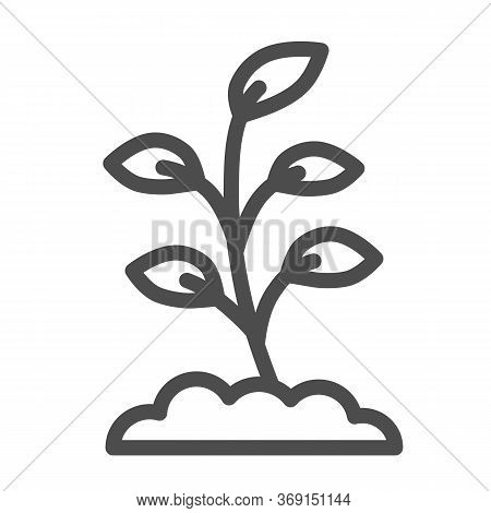 Small Sprout With First Leaves Line Icon, Spring Concept, Sprout Sign On White Background, Seedling
