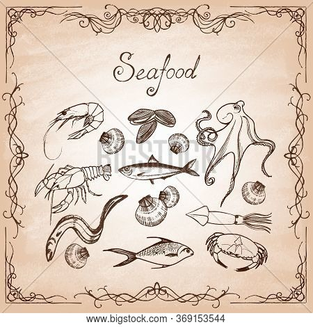 Set Of Hand-drawn Elements Seafood On Paper.