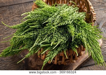 Horsetail Twigs In A Small Basket On A Table