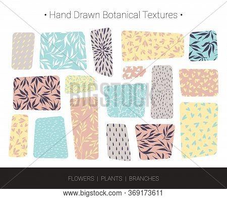 Original Botanic Textures. Hand Drawn Vector Branch, Flower, Stem, Leaf, Twig Patterns. Botanical De