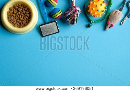Flat Lay Composition With Accessories For Dog And Cat On Blue Background. Pet Care And Training Conc