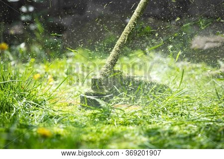 Mowing a lawn with a lawn mower. Garden work concept background.