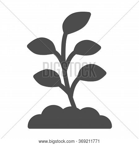 Small Sprout With First Leaves Solid Icon, Spring Concept, Sprout Sign On White Background, Seedling