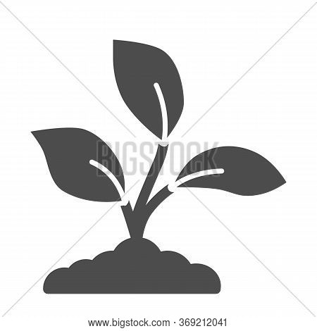 Garden Seedlings Grows In A Ground Solid Icon, Nature Concept, Plant Sprouts Sign On White Backgroun