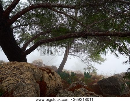 Mount Precipice In Nazareth In The Galilee Region In  Israel. The Site Of The Rejection Of Jesus