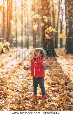 Little Beautiful Girl 1 Year Old Walks In The Autumn Warm Forest, Plays And Throws Autumn Leaves Int