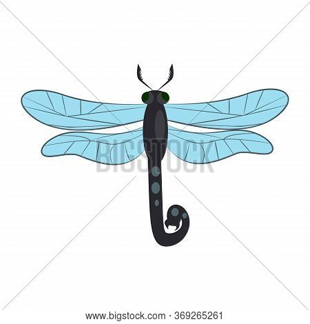 Dragonfly Isolated . Entomology, Wildlife, Damselfly. Insects Concept. Can Be Used For Topics Like N