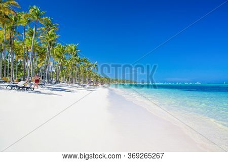 Coconut Palm Trees On White Sandy. Panoramic View Of Bavaro Beach On A Sunny Day. Tropical Beach One