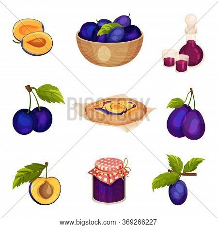 Plum Foodstuff With Sweet Pie And Fruit Jam In Glass Jar Vector Set