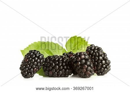 A Heap Of Blackberries With Blackberry Leaves Isolated On A White Background