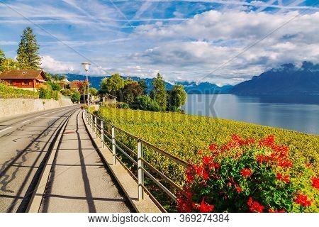 Lavaux, Switzerland: Motorway Over The Lake Geneva Among Lavaux Vineyard Tarraces In Canton Of Vaud