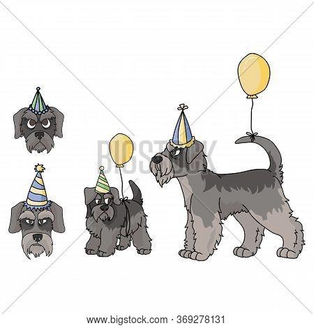 Cute Cartoon Schnauzer Dog Party Set Vector Clipart. Pedigree Kennel Doggie Breed. Purebred Domestic