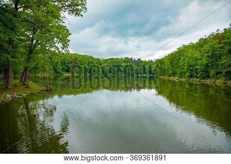 Pond Near Czech Castle Konopiste Near Prague In Czech Republic