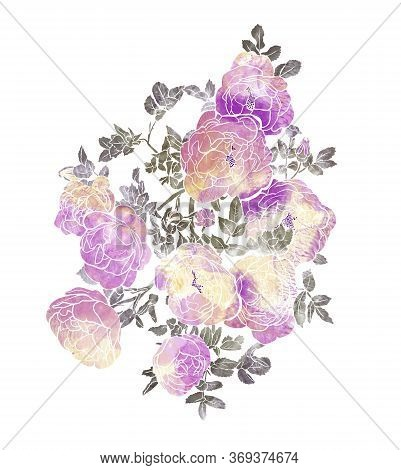 Flowers Of Rose With Leaves Isolated On White Background. Vintage Design Good For Wedding Invitation