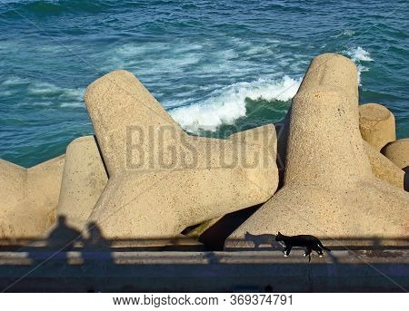Powerful Concrete Shoreline Reinforcement Of The Atlantic Ocean In Casablanca, Morocco