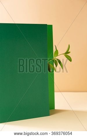 Abstract Geometric Background With A Plant Branch