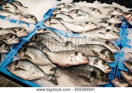 Gilt-head Bream Fish Dorado On Ice At The Seafood Booth, Fresh Dorada Fish In The Market