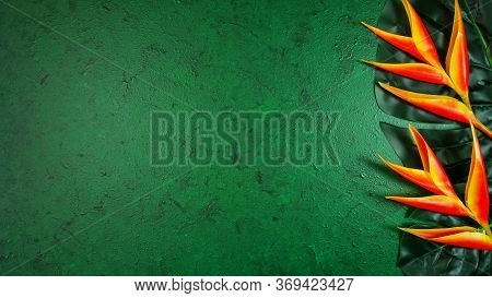 Tropical Background On Dark Green Textured Background With Negative Copy Space.