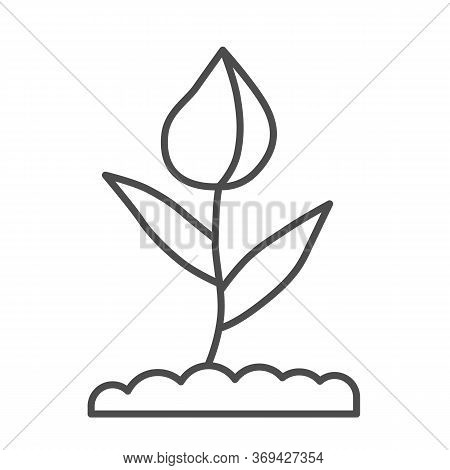 Flower Bud Thin Line Icon, Floral Concept, Closed Tulip Bud With Leaves Sign On White Background, Sp