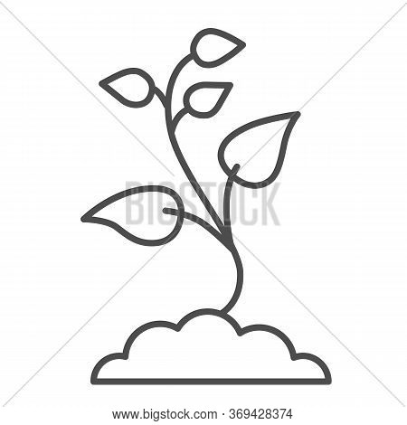 Seedling With Many Leaves Thin Line Icon, Nature Concept, Seeds Sprout In Ground Sign On White Backg