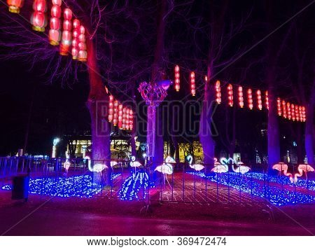 Belgrade / Serbia - February 8, 2020: New Year's Decoration On The Occasion Of The Lunar New Year In