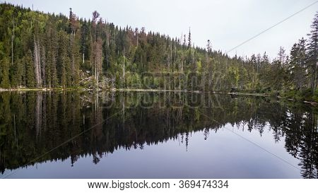 Lake In Sumava Natural Park In Czechia