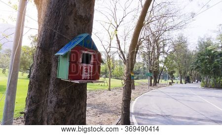 A Blue, Green, Red And Pink Color Wooden Squirrel's House Dwelling, Hanging On The Tree Near Jogging