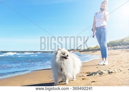 Girl With Protective Mask Walking With Dog On The Beach. White Pomeranian Dog