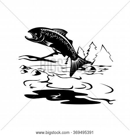 Retro Woodcut Style Illustration Of A Spotted Or Speckled Trout Fish Jumping Up River With Mountains