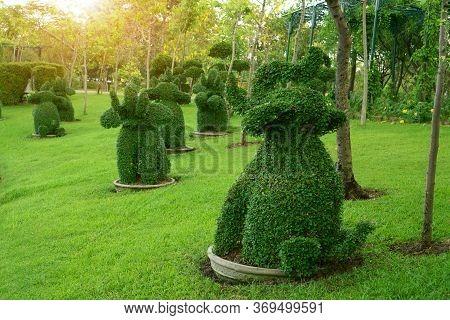 Happy Elephants Shape Bush Standing In The Park Under Sunset Background