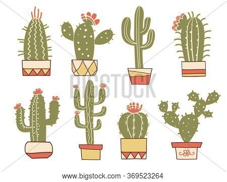 Cactuses Floral. Hand Drawn Vintage Cactuses In Pots. Vector Set Color Cacti, Aloe And Leaves Collec