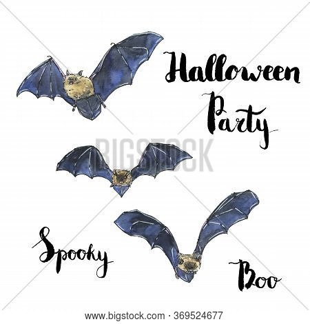 Hand Drawn Watercolor Halloween Set With Bat And Handwritten Words Halloween Party Spooky Boo On Whi