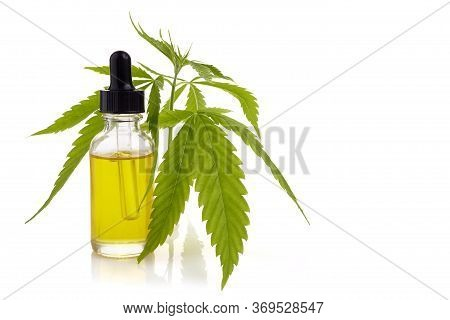 Cbd Oil, Cannabis Extract. Medical Marijuana, Hemp Oil In Bottle.