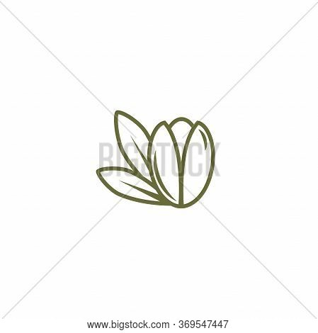 Argan Nut Green Icon. Beauty And Cosmetics Oil. Cosmetic Ingredient Carotene, Carotin.