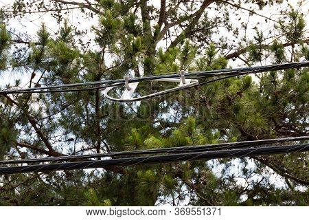 White Plastic Fiber Optic Slack Radius Limiter Bracket Before Pine Trees, Horizontal Aspect