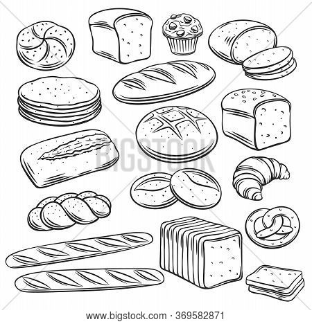 Bakery Breadoutline Vector Of Rye, Whole Grain And Wheat Bread, Pretzel, Muffin, Pita , Ciabatta, Cr