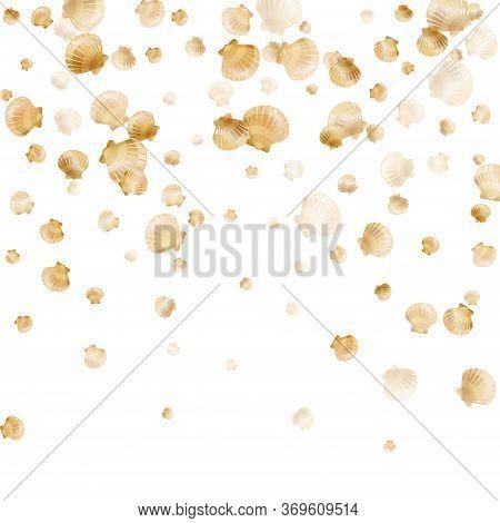 Gold Seashells Vector, Golden Pearl Bivalved Mollusks. Ocean Scallop, Bivalve Pearl Shell, Marine Mo