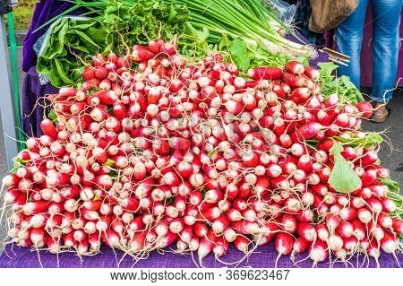 Display Of Delicious Looking Fresh Raw Red Radishes For Sale At Local Farmers Market