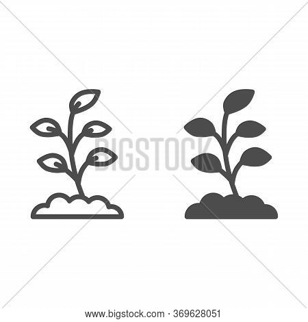 Small Sprout With First Leaves Line And Solid Icon, Spring Concept, Sprout Sign On White Background,